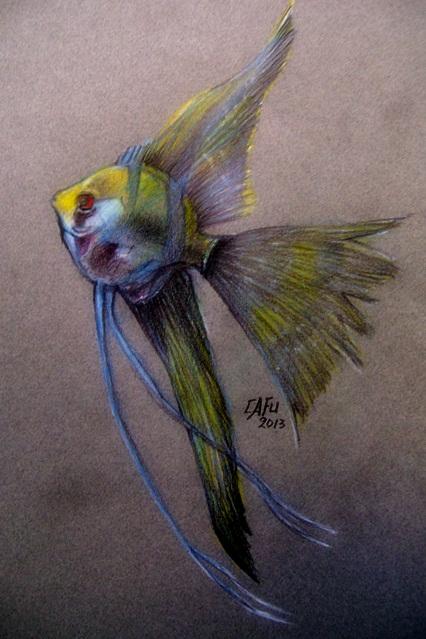 El Blog de Cafu dibujos de peces a lapiz