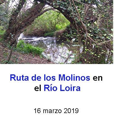 Molinos en Rio Loira