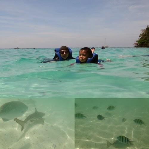 how to go to pulau payar