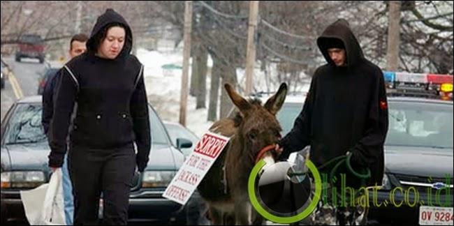 Menggiring Keledai Keliling Kota