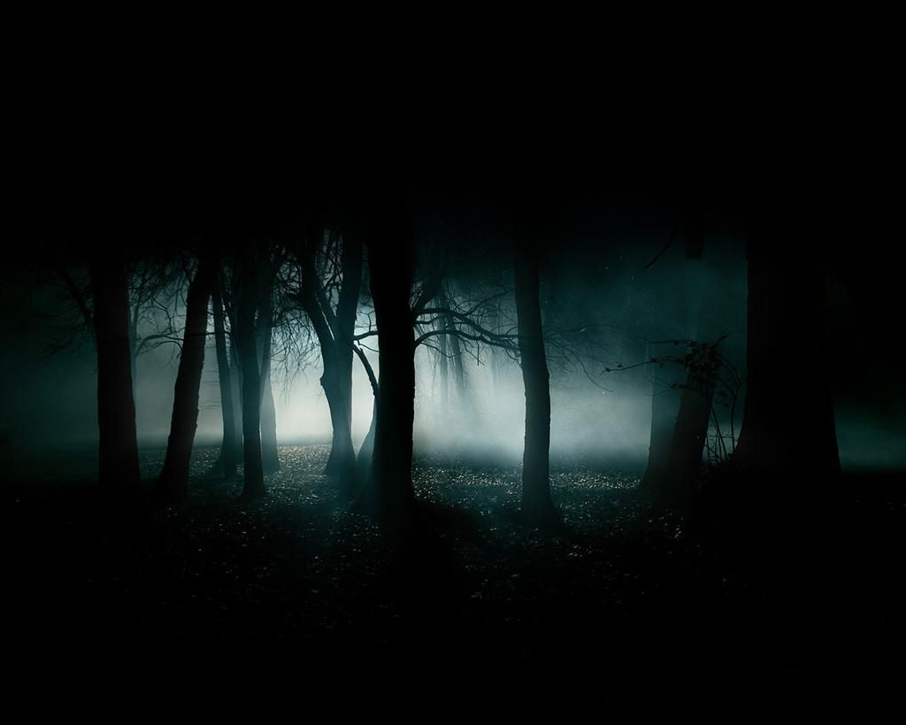 una ciudad solitaria [se supone que fic de miedo] Bosques_oscuros
