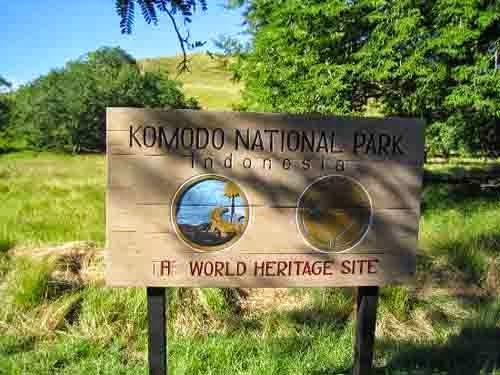 Wisata Alam Taman Nasional Komodo Nusa Tenggara