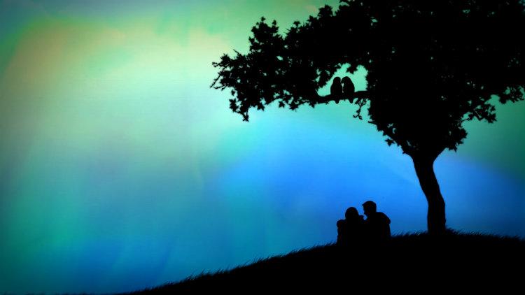 Casal abraçados sentados de baixo de uma árvore num pequeno morro.