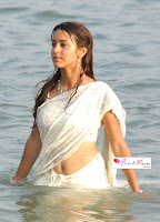 Bollywood Actress in white saree