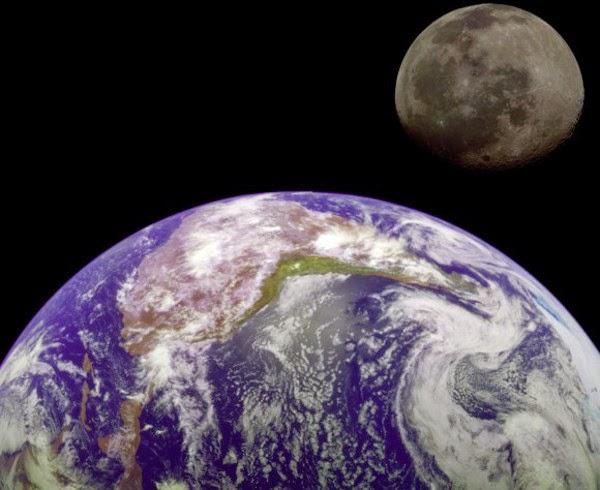 Fosil Bulan