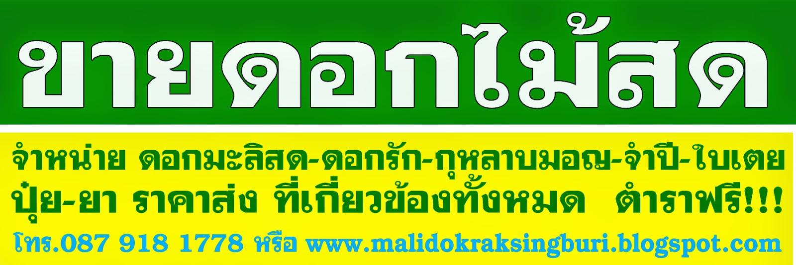 http://www.malidokraksingburi.blogspot.com