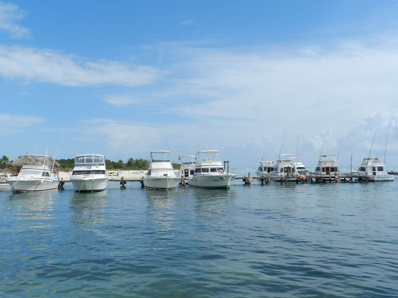 maroma fishing yachts
