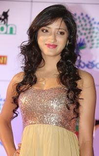 Actress Richa Panai Latest Pictures at Memu Saitam Dinner with Stars Red Carpet 15