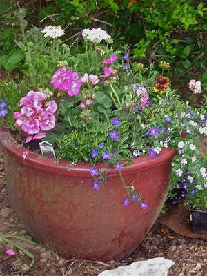 Easy Ways to Conserve Soil in a Large Planter