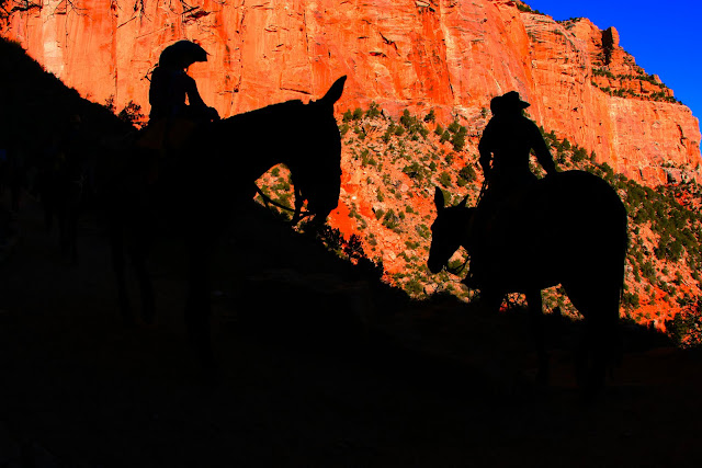 The silhouettes of two people at Grand Canyon National Park riding mules down into the canyon.