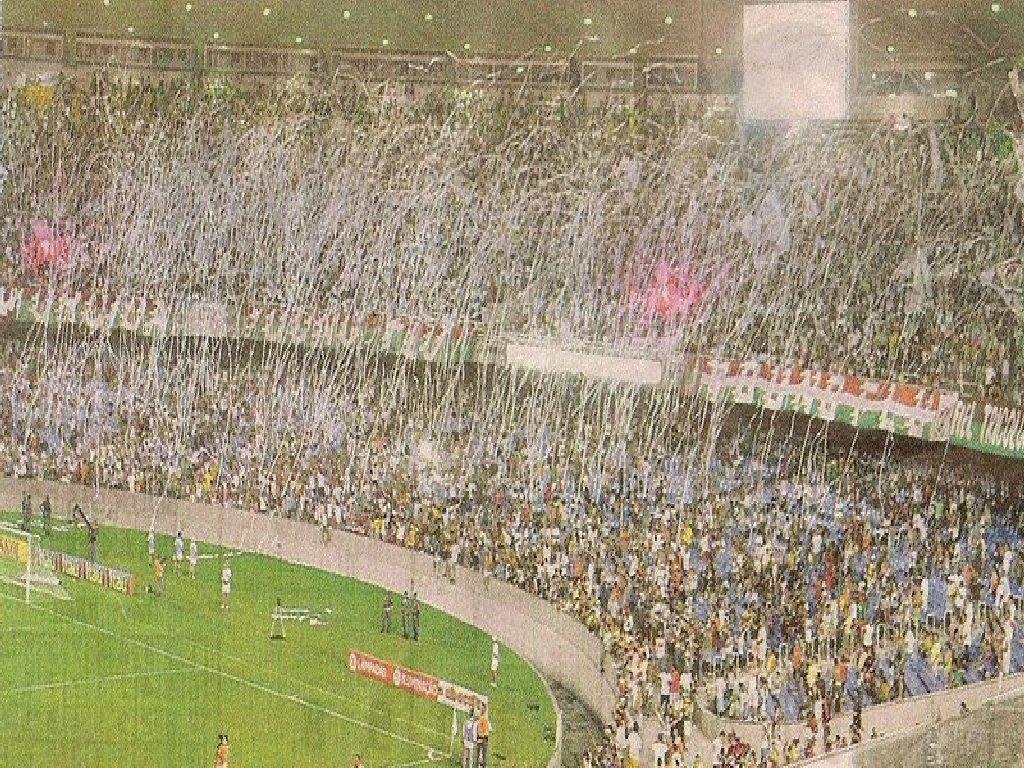 Fluminense do Coração: Torcida do Fluminense