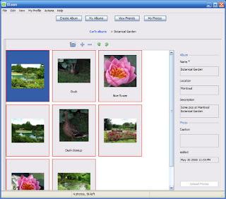 bloom-programma-facebook