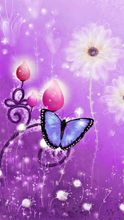 Cute Butterfly phone wallpapers-720x1280