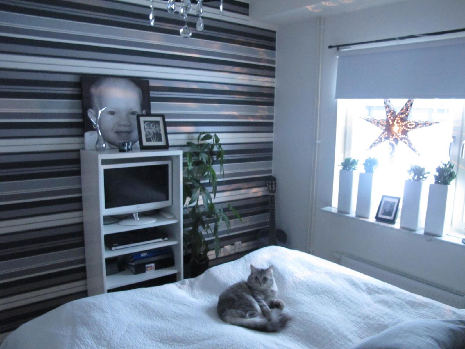 Fröken björk*: det nya sovrummet