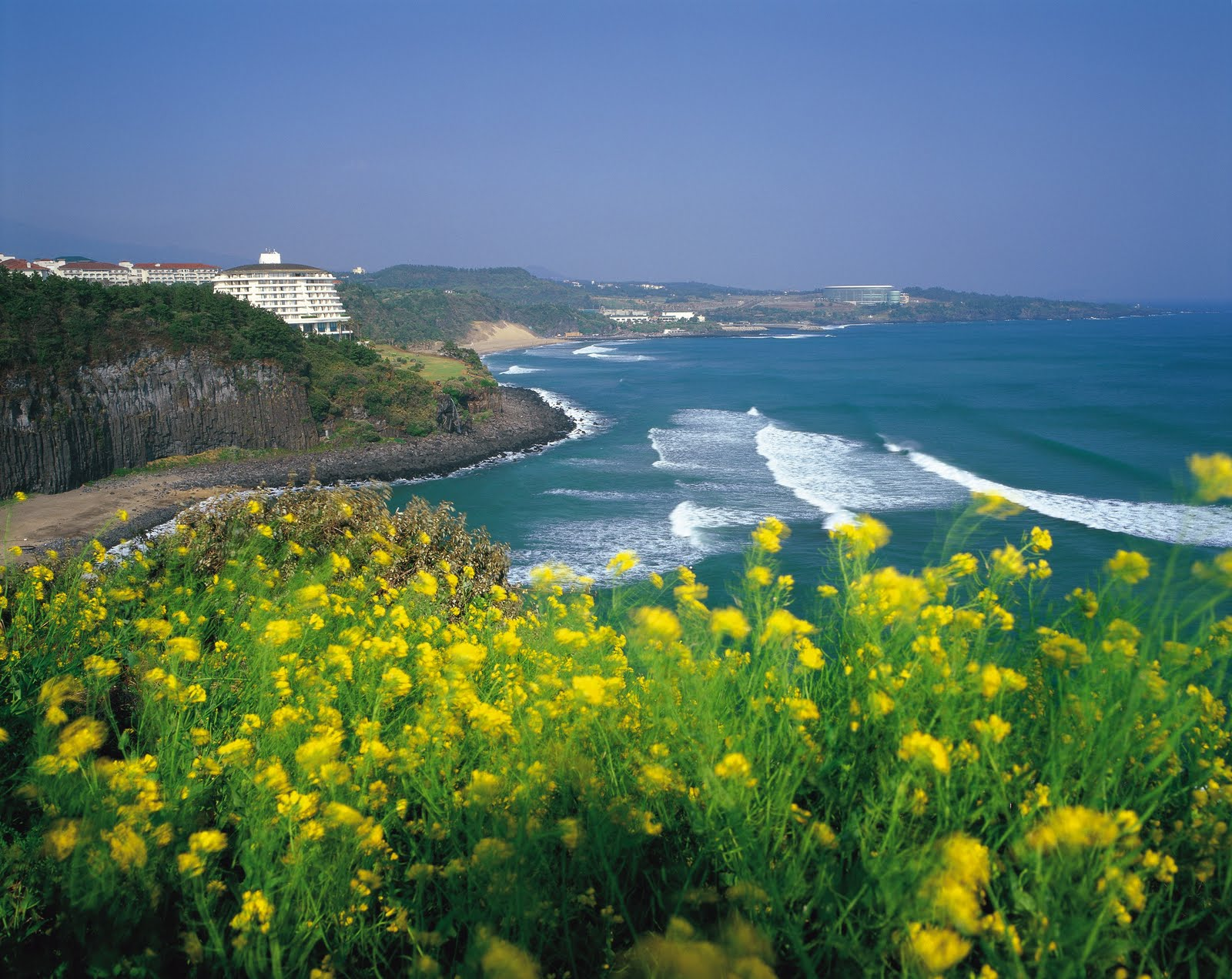 Jeju Island South Korea  city pictures gallery : jeju island south korea jeju island south korea jeju island south ...