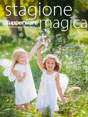 Catalogo Tupperware 2013