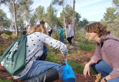 Cebrián recuerda que necesitamos los árboles para afrontar el cambio climático