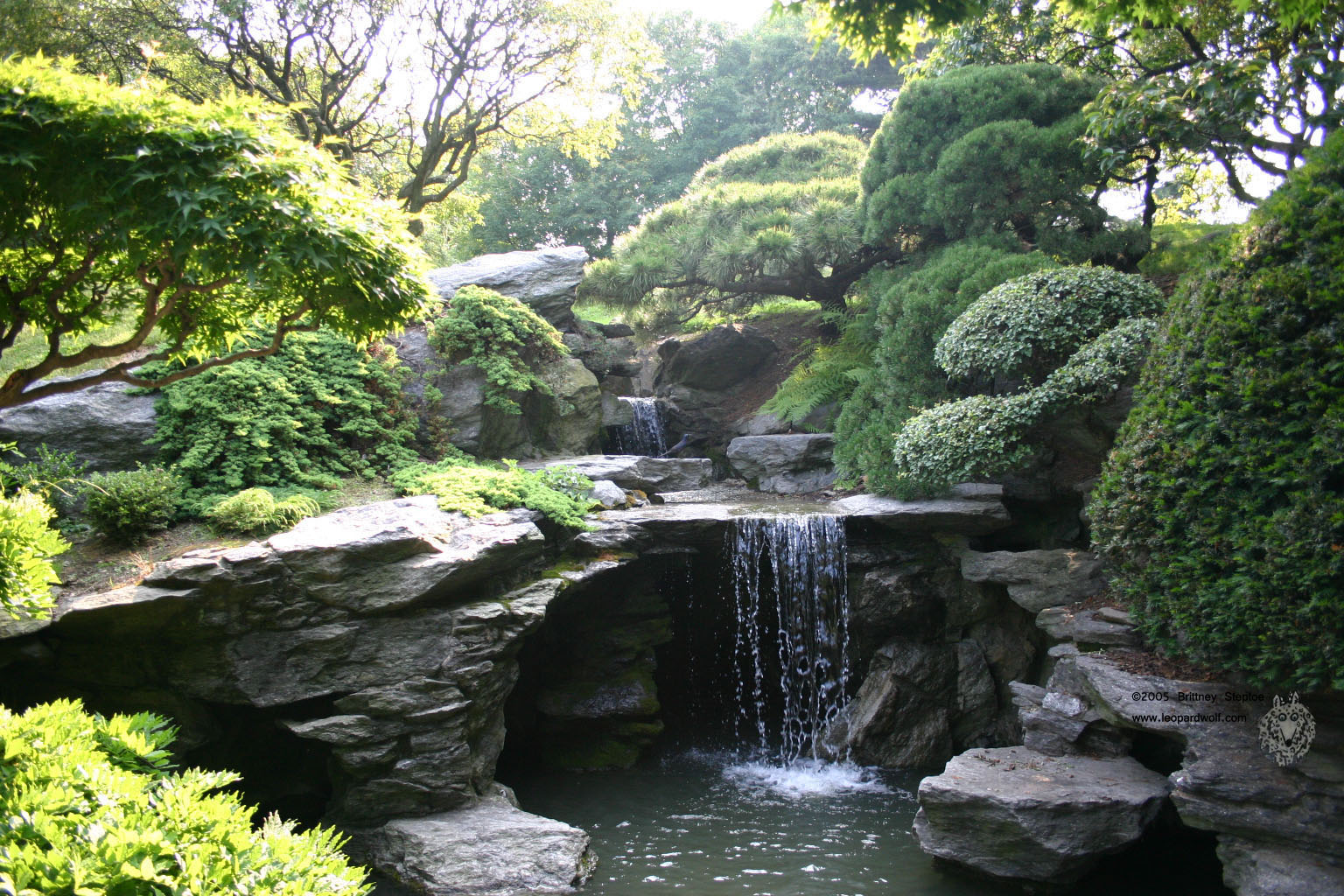 Latest wallpapers japanese garden wallpapers new for Japanese pond