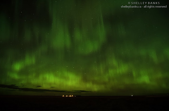 Northern Lights © 2013, Shelley Banks, all rights reserved.