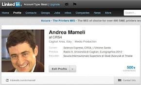 Andrea Mameli Linkedin profile