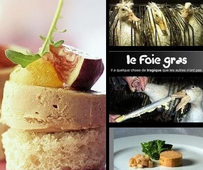 http://1.bp.blogspot.com/-b2sabCJ9GCg/UMqoWhR1YNI/AAAAAAAAQ1Q/YcObhoJ5eEY/s1600/%E2%80%9CFoie+Gras%E2%80%9D+Makanan+Mewah+Di+Perancis+yang+Pembuatannya+Sangat+Sadis+01.jpg