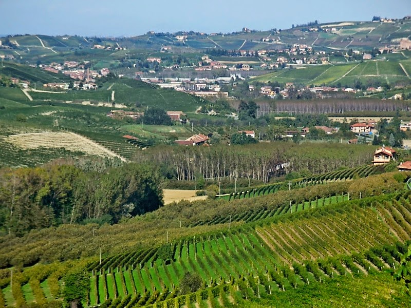 Piedmont wine region in Italy