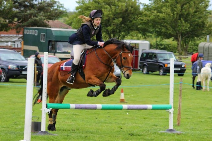 Showjumping at Emberton and District Riding Club with Rocky
