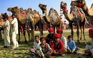 Bikaner Camel Festival 2015