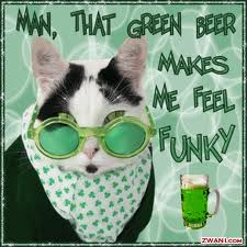 Funny pic of cat, Man that green beer makes me feel funky