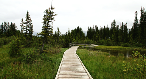 canmore boardwalk alberta rocky mountains travel photography