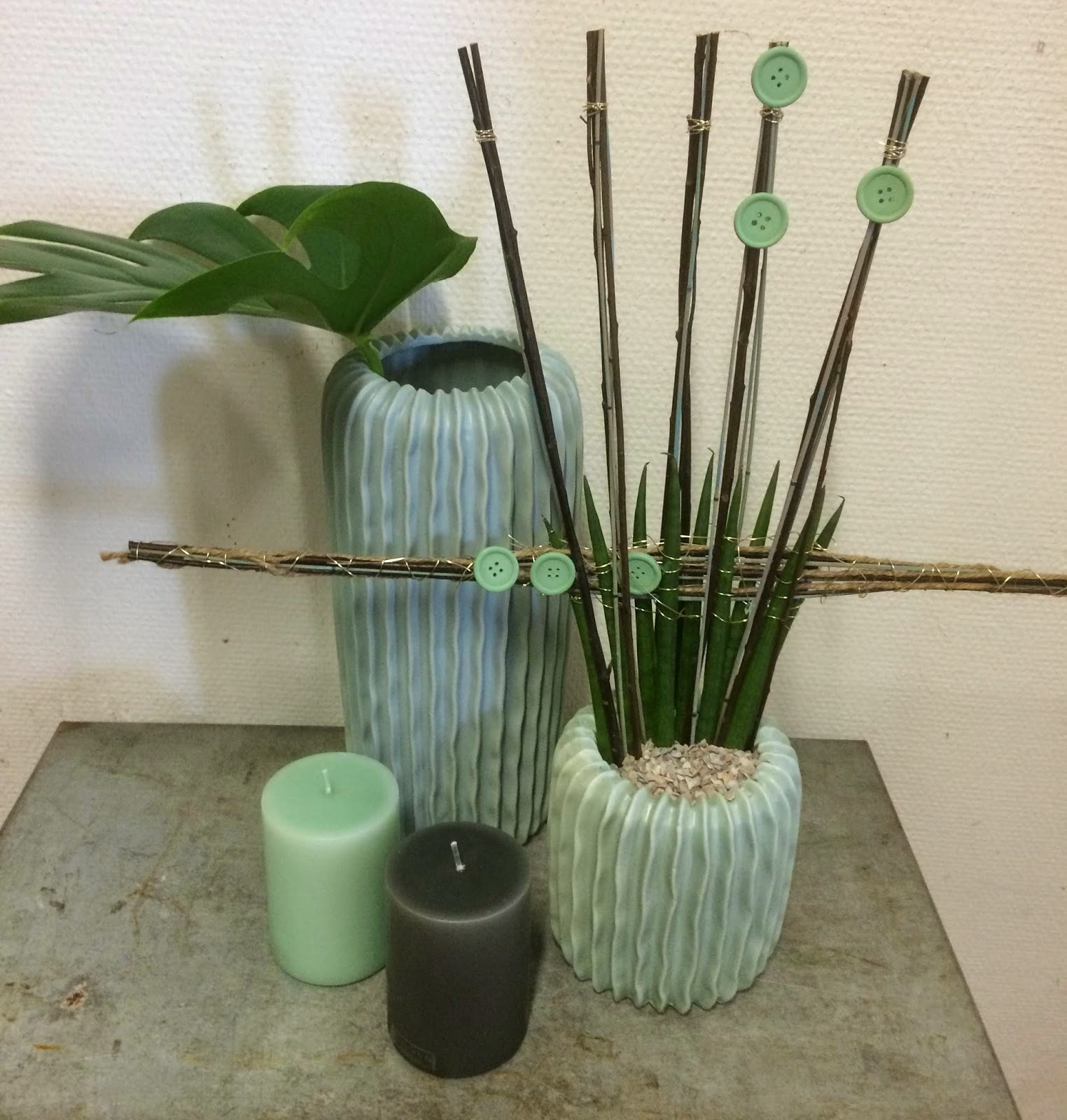 styling af planter