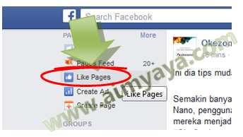 Gambar: Melihat Daftar Halaman FansPage Facebook