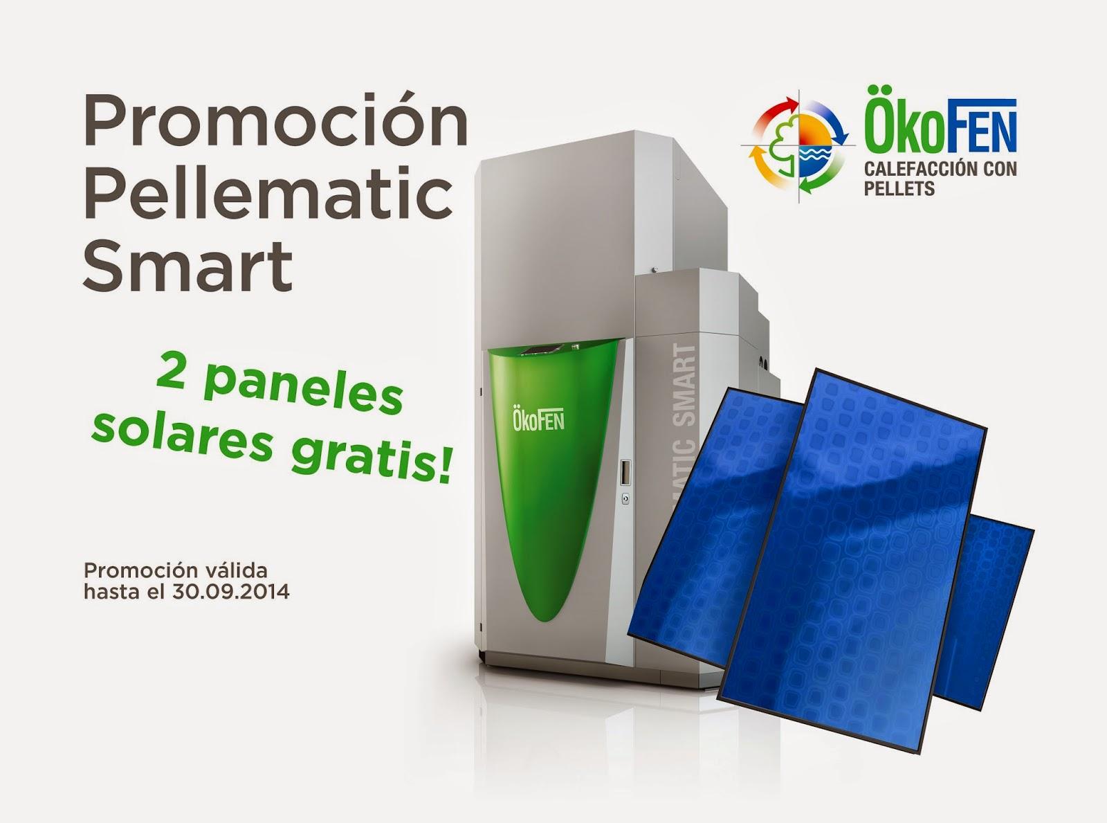promoción caldera de pellets