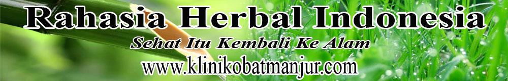 obat herbal alami penyakit herpes