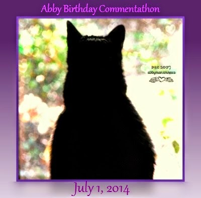 Angel Abby's Commentathon