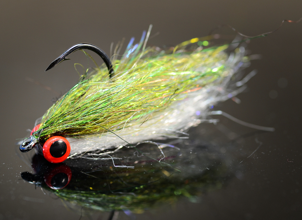 Comb over minnow fly fish food fly tying and fly fishing for Fly fishing tying