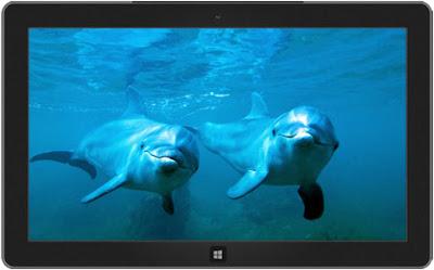 Windows 8 Yunuslar Teması