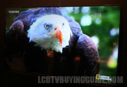 LCD TV Buying Guide - New Toshiba 2012 LCD Ratings and Evaluation