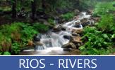 Fotografías de ríos cruzando por los bosques, selvas, montañas y planicies. - Rivers