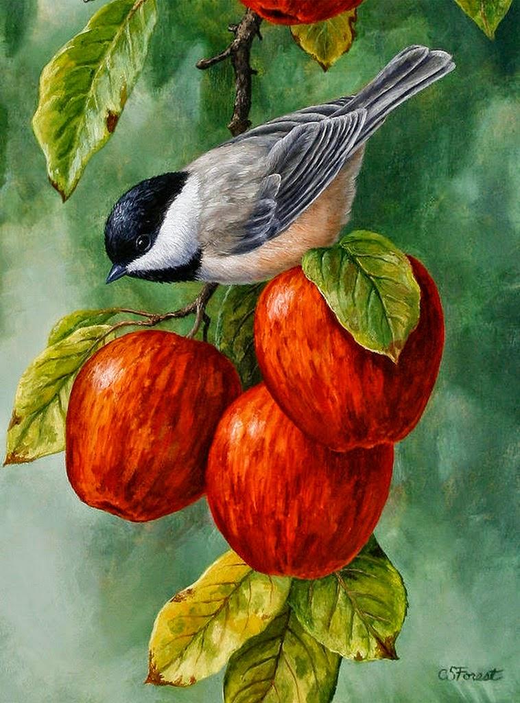 frutas-y-aves-en-pinturas-oleos