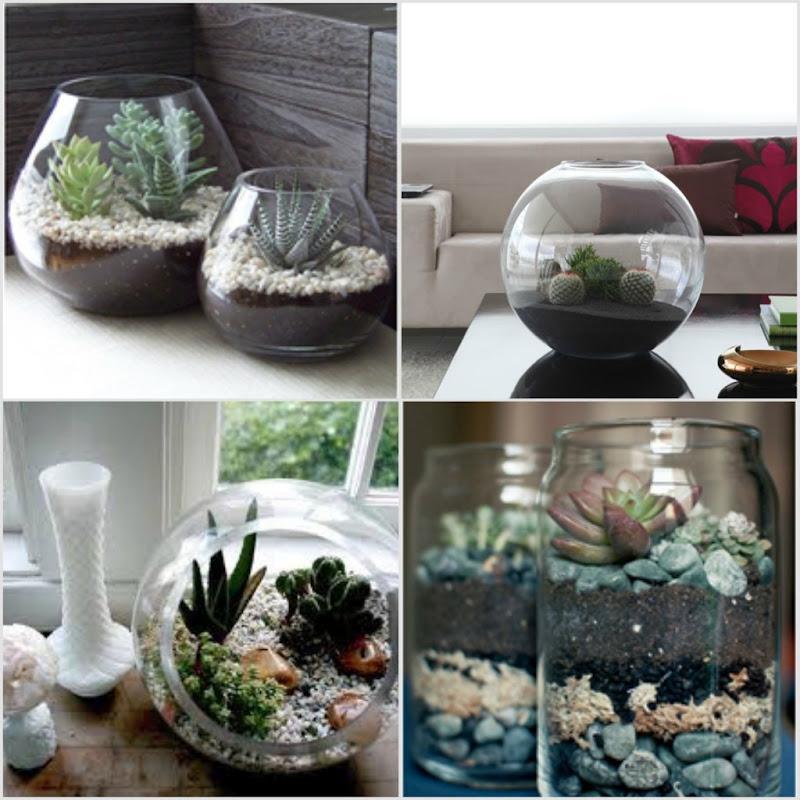 em vidro e aquário, minha maior inspiração para o meu mini jardim