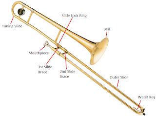 Trombone-Anatomy
