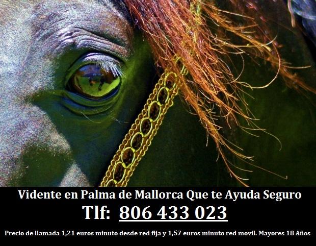 Vidente en Palma de Mallorca Que te Ayuda Seguro