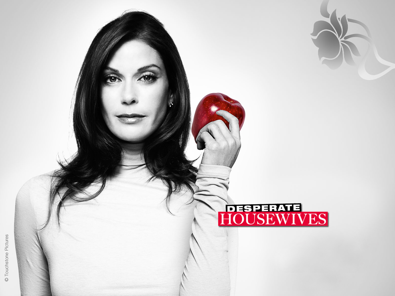 Desperate Housewives Wallpapers HD Wallpapers - desperate housewives wallpapers