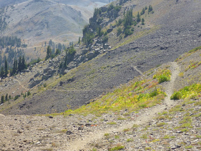 Pacific Crest Trail south of Carson Pass