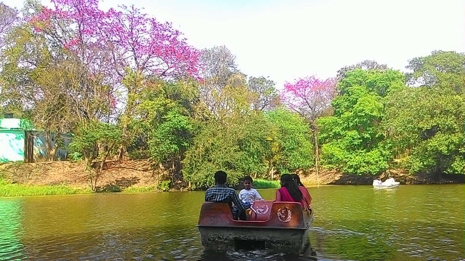 Boating in Lake ( jheel) Inside Patna zoo