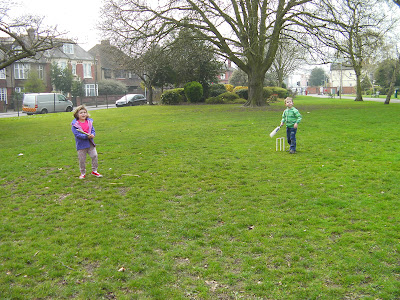 spontaneous game of cricket in the park