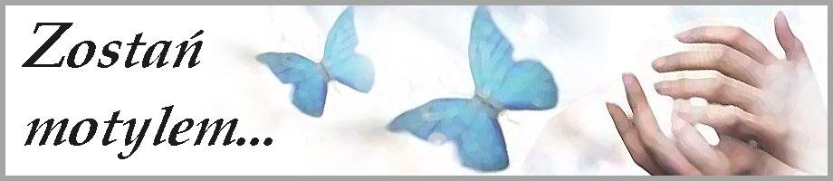 Zostań Motylem