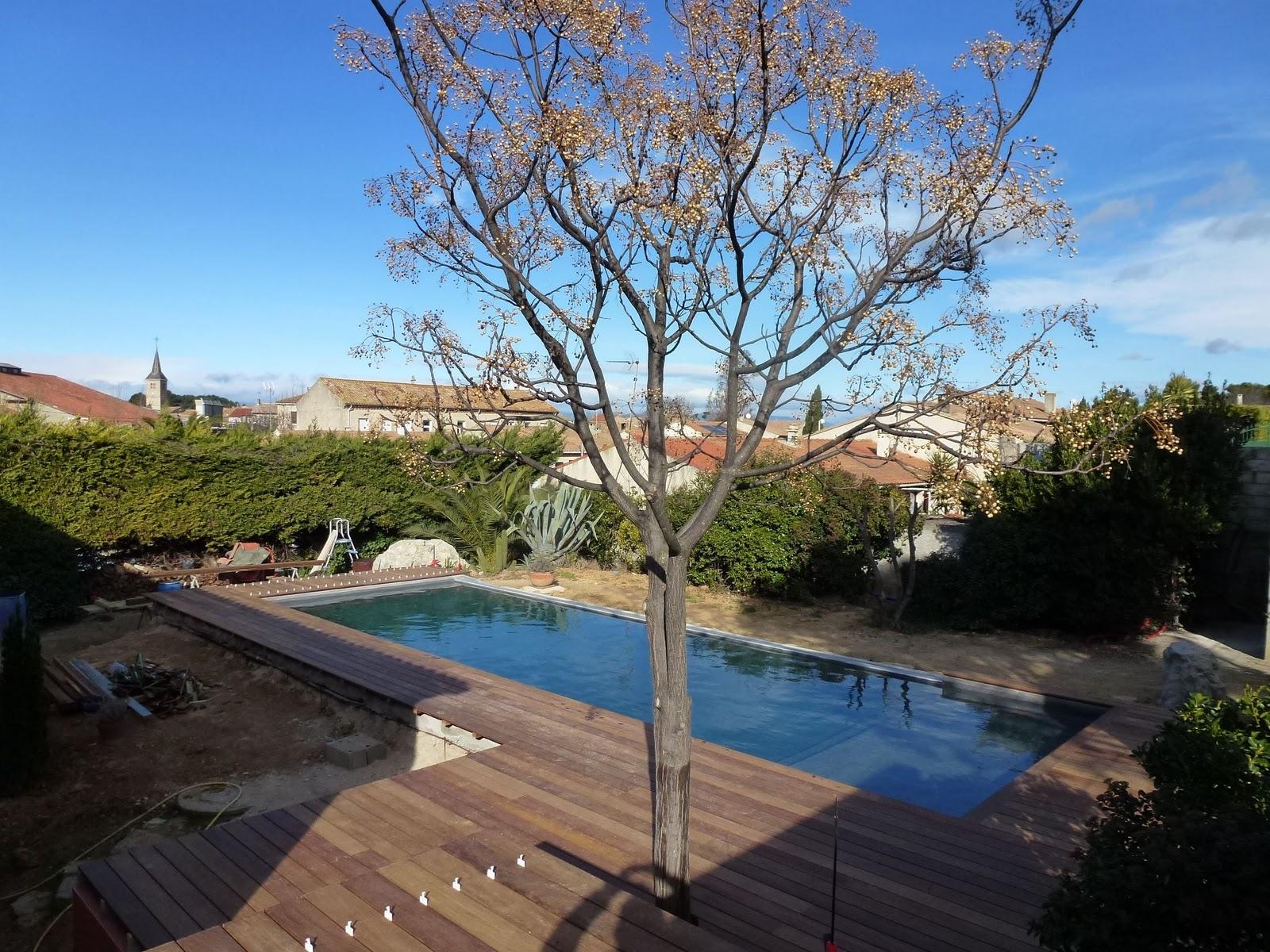 Terrasses en ip par decobois construction piscine diffazur for Construction piscine tva 5 5