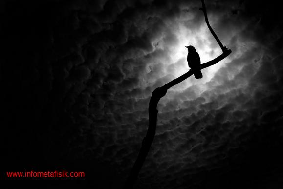 Bisakah Paranormal Berinteraksi dengan Orang yang Sudah Meninggal?